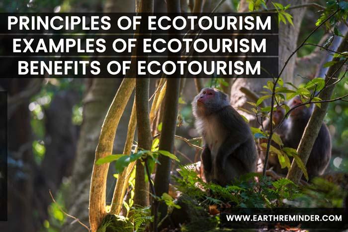 Ecotourism: Principles, Benefits and Examples of Ecotourism